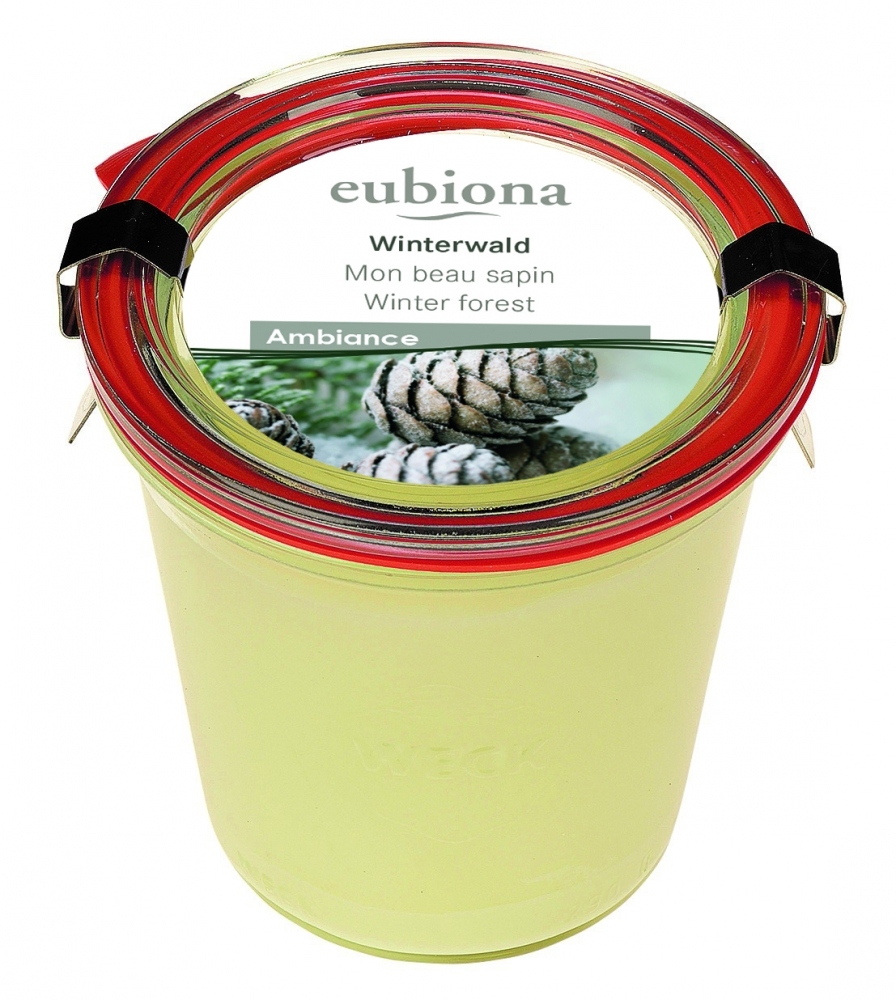 Eubiona tuoksukynttilä Winter Forest