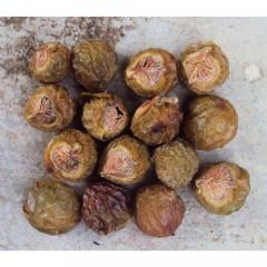 Naturgut pesupähkinät 250g