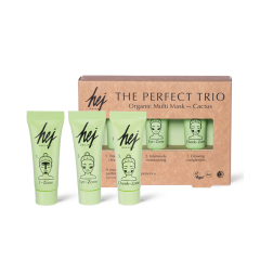 SHOKKIHINTA! HEJ Cactus The Perfect Trio Multi Mask